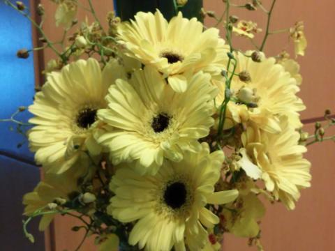 Assinaturas - Florença Eventos e Festas - Decoração para Casamento - Campinas - SP - 82
