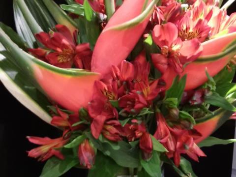 Assinaturas - Florença Eventos e Festas - Decoração para Casamento - Campinas - SP - 61