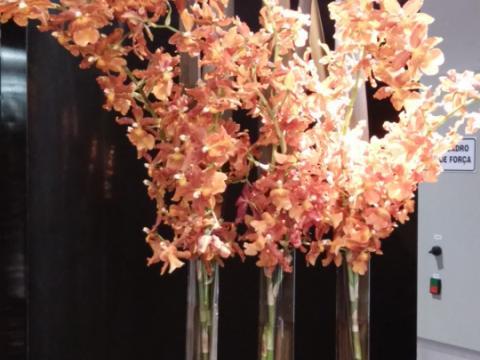 Assinaturas - Florença Eventos e Festas - Decoração para Casamento - Campinas - SP - 15