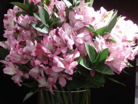 Assinaturas - Florença Eventos e Festas - Decoração para Casamento - Campinas - SP - 147