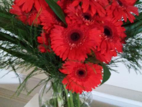 Assinaturas - Florença Eventos e Festas - Decoração para Casamento - Campinas - SP - 120