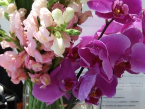 Assinaturas - Florença Eventos e Festas - Decoração para Casamento - Campinas - SP - 168
