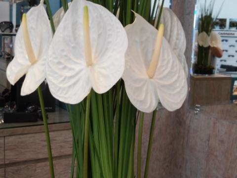 Assinaturas - Florença Eventos e Festas - Decoração para Casamento - Campinas - SP - 153