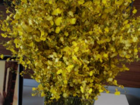 Assinaturas - Florença Eventos e Festas - Decoração para Casamento - Campinas - SP - 33