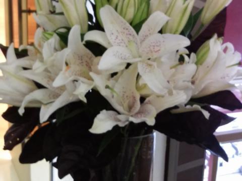 Assinaturas - Florença Eventos e Festas - Decoração para Casamento - Campinas - SP - 121