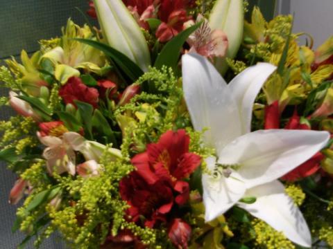 Assinaturas - Florença Eventos e Festas - Decoração para Casamento - Campinas - SP - 96