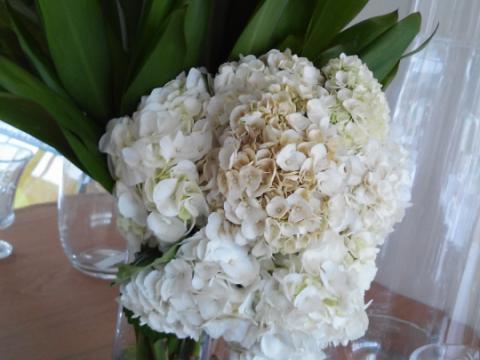 Assinaturas - Florença Eventos e Festas - Decoração para Casamento - Campinas - SP - 172