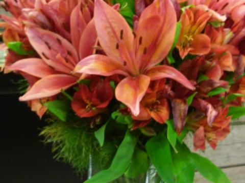 Assinaturas - Florença Eventos e Festas - Decoração para Casamento - Campinas - SP - 50