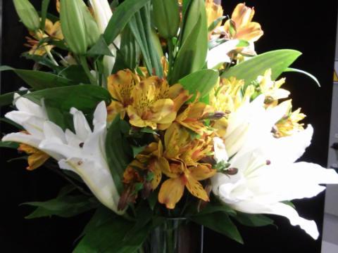 Assinaturas - Florença Eventos e Festas - Decoração para Casamento - Campinas - SP - 35