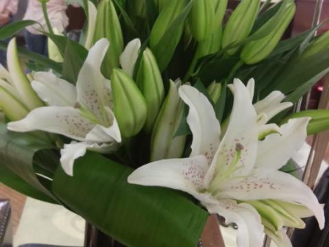 Assinaturas - Florença Eventos e Festas - Decoração para Casamento - Campinas - SP - 136