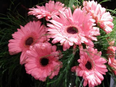 Assinaturas - Florença Eventos e Festas - Decoração para Casamento - Campinas - SP - 170