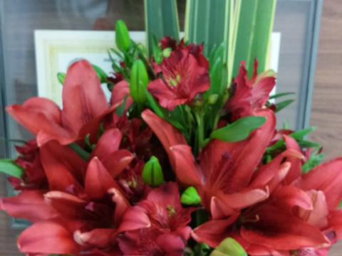 Assinaturas - Florença Eventos e Festas - Decoração para Casamento - Campinas - SP - 42