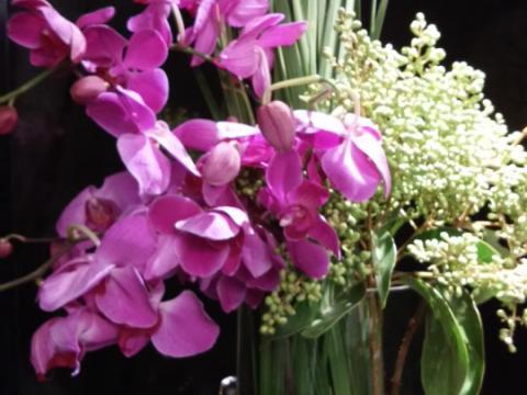 Assinaturas - Florença Eventos e Festas - Decoração para Casamento - Campinas - SP - 95