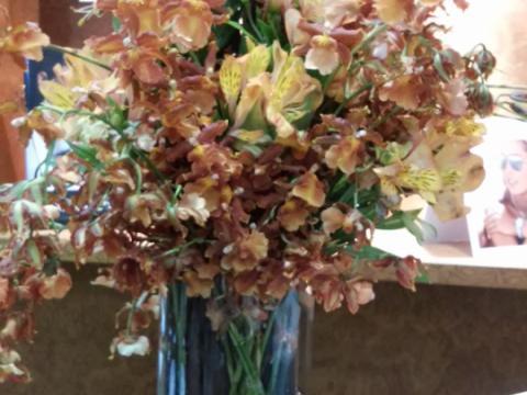 Assinaturas - Florença Eventos e Festas - Decoração para Casamento - Campinas - SP - 133
