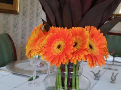 Assinaturas - Florença Eventos e Festas - Decoração para Casamento - Campinas - SP - 166