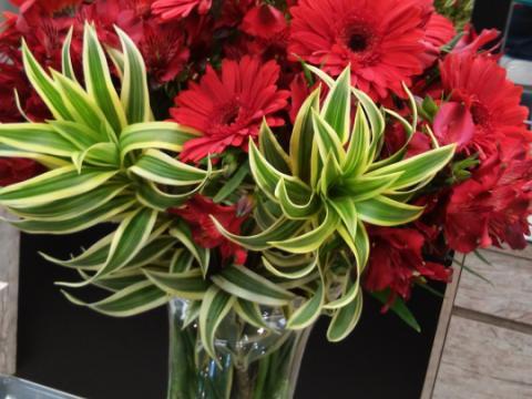 Assinaturas - Florença Eventos e Festas - Decoração para Casamento - Campinas - SP - 162