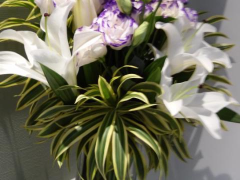 Assinaturas - Florença Eventos e Festas - Decoração para Casamento - Campinas - SP - 52