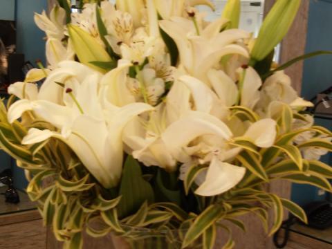 Assinaturas - Florença Eventos e Festas - Decoração para Casamento - Campinas - SP - 14