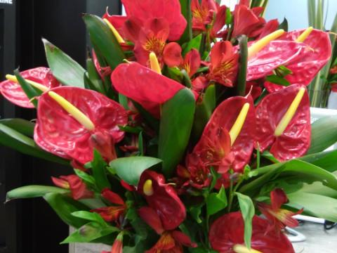 Assinaturas - Florença Eventos e Festas - Decoração para Casamento - Campinas - SP - 58