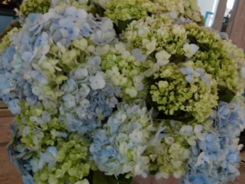 Assinaturas - Florença Eventos e Festas - Decoração para Casamento - Campinas - SP - 34