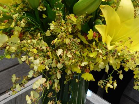 Assinaturas - Florença Eventos e Festas - Decoração para Casamento - Campinas - SP - 55